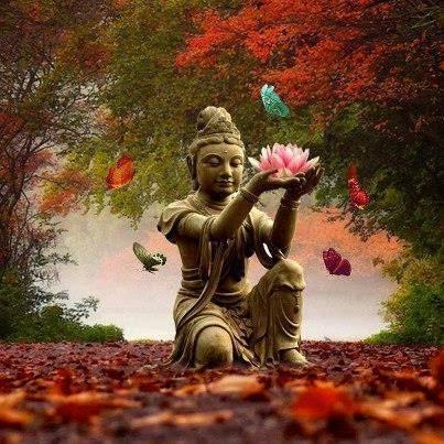 la-ley-del-desapego-quc3a9-nos-ensec3b1a-el-budismo-viaje-hacia-si-mismo